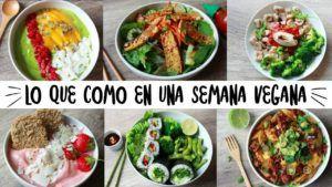 comidas sin carne vegana