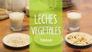 leches vegetales caseras