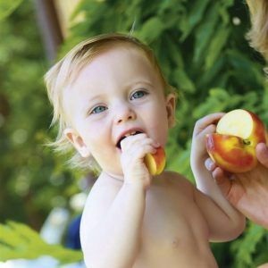 leches vegetales para bebes