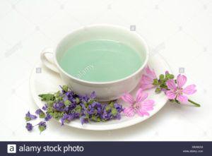 té verde malva anis verde y…