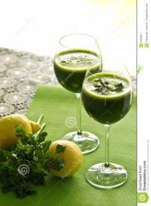 bebida vegetal