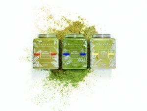 champú ecologico carrefour vegano