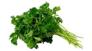 coriandro semillas veganos