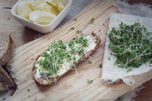 descargar pan y mantequilla vegana