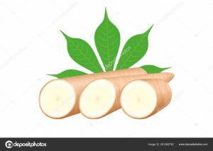 harina de tapioca