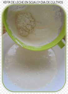 kefir con leche de soja