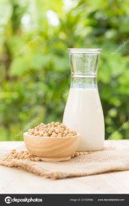 leche de soja casera vegana