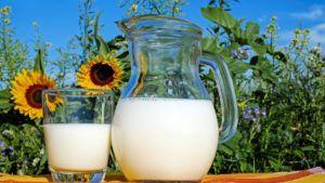leche semidesnatada vegana