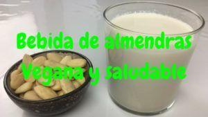 leche vegana casera
