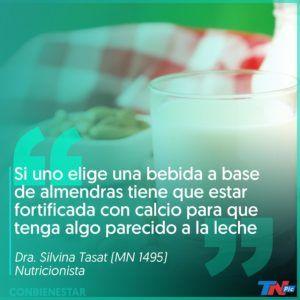 leche vegetal con mas calcio