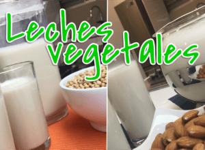 leche vegetales