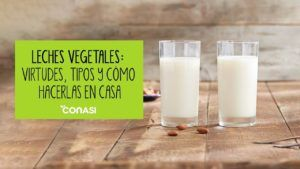 leches vegetales vegana