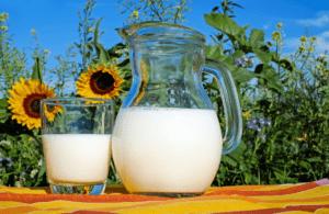 marcas de leche españa