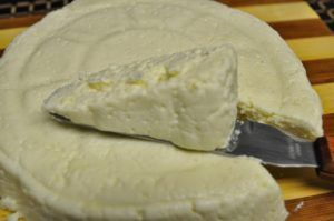 queso vegano en thermomix