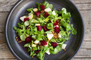 receta barra de proteina vegana