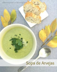 sopa de mayonesa casera vegana