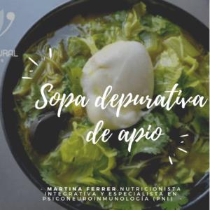 sopa depurativa receta vegana