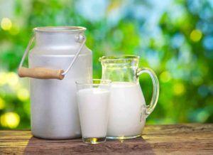 sustituir leche de vaca