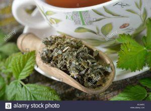 té de hojas de frambuesa