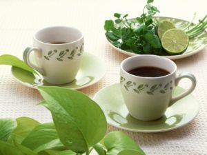 té rojo para adelgazar
