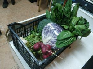 verdura de temporada
